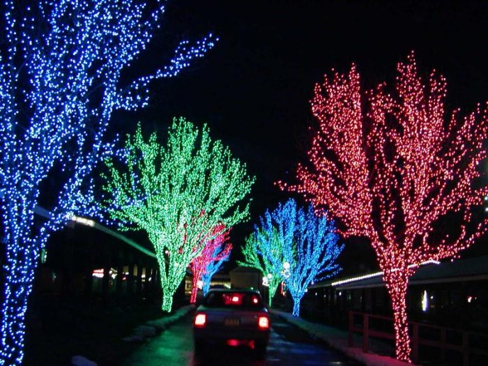 $100 Towards Custom Christmas Light Installtion Only $50 & Custom Christmas Lights Deals u2013 Utah Sweet Savings