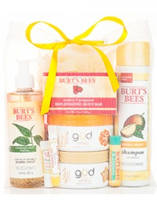 burts bees summer grab bag