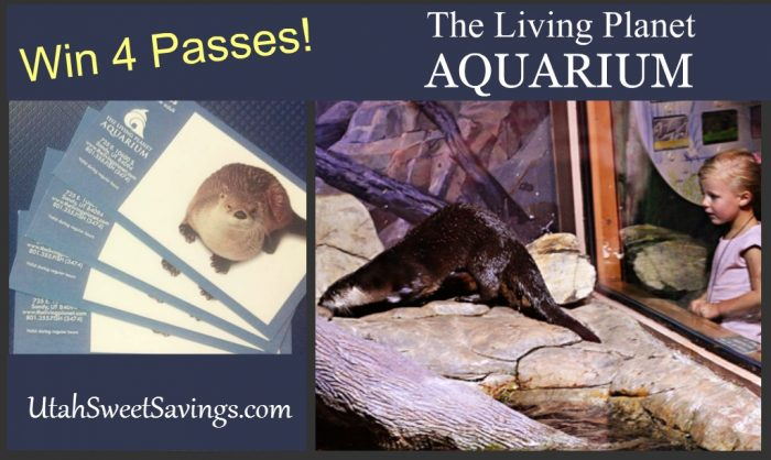 The Aquarium Giveaway Image