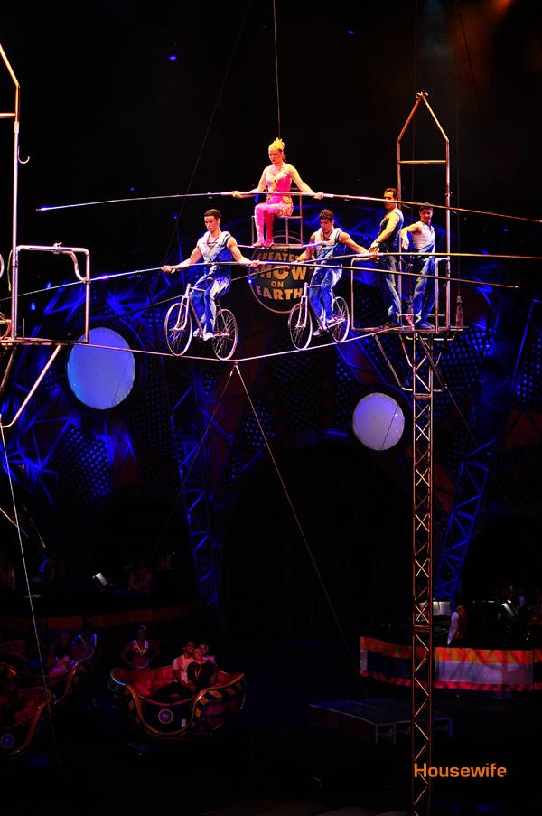 Circus Trapise