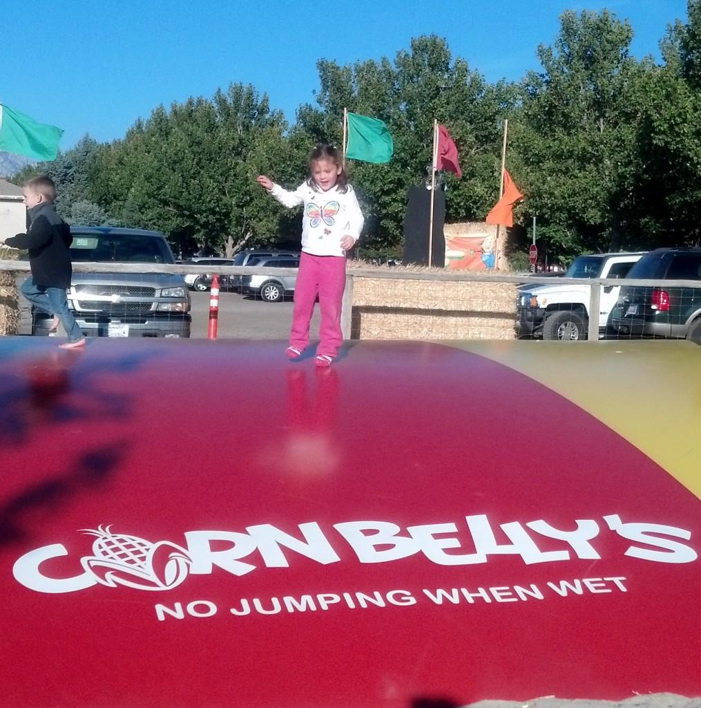 Cornbelly's Jumper