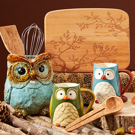 what a hoot owl entertaining zulily sale