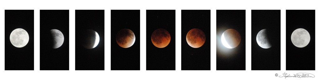2014-4-15 Lunar Eclipse - Copyrighted