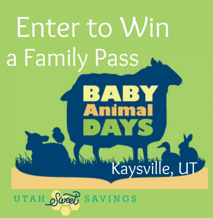 Baby Animal Days Giveaway