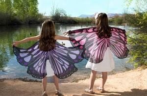 enchanted dress up wings