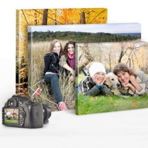 Six Snap N Frames, Creative Choice's Complete Photo Canvas Kit