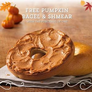 Free Pumpkin Shmear