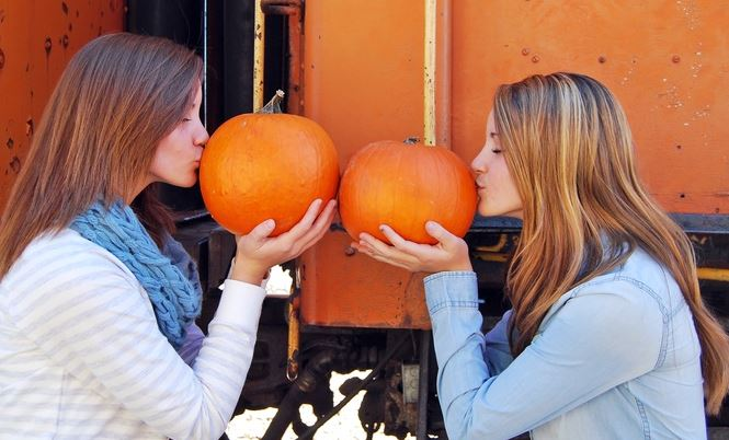 heber valley railroad pumpkin festival
