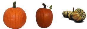pumpkins at lowes