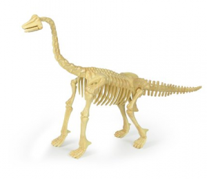 Dinosaurs 20 Skeleton Brachiosaurus Kit