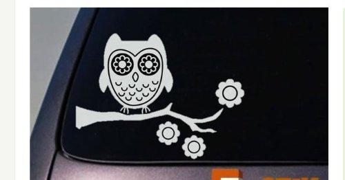 Owl Vinyl Window Decal