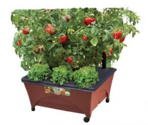 raised garden kit
