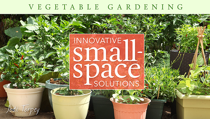 vegetable gardening craftsy class