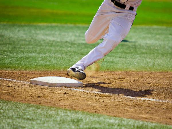Salt Lake Bees Baseball Ticket & Hot Dog