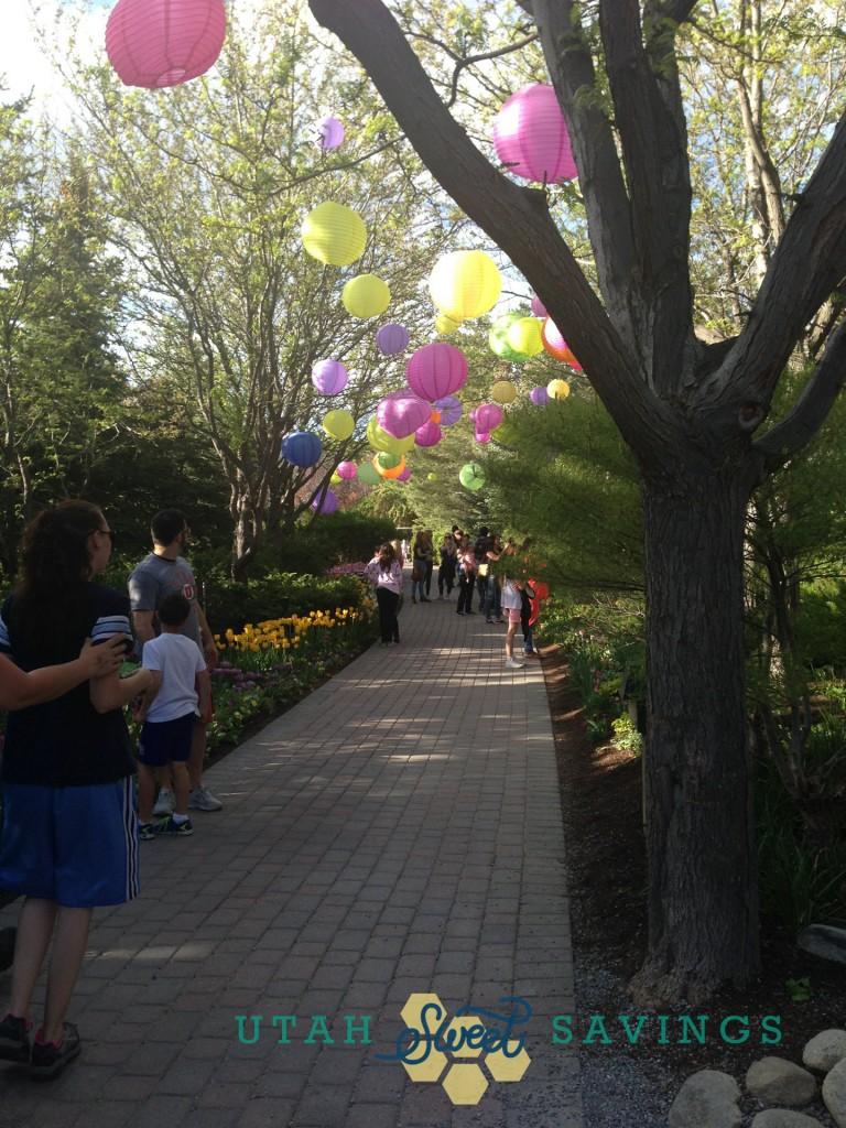 tulip festival 5