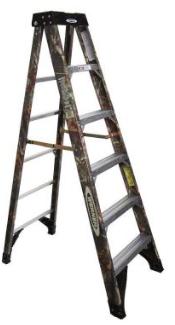 werner ladder