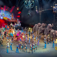 Last Day Ringling Bros And Barnum Bailey Circus Xtreme At Energysolutions Arena Tickets
