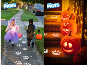 halloween paws