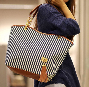 striped canvas purse