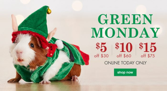 green monday petsmart