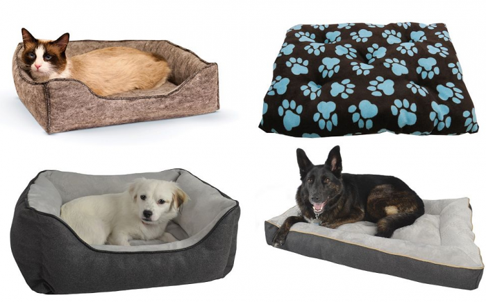 kohls pet beds