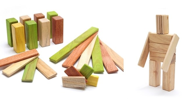 Tegu 22-Piece Magnetic Wooden Block Set