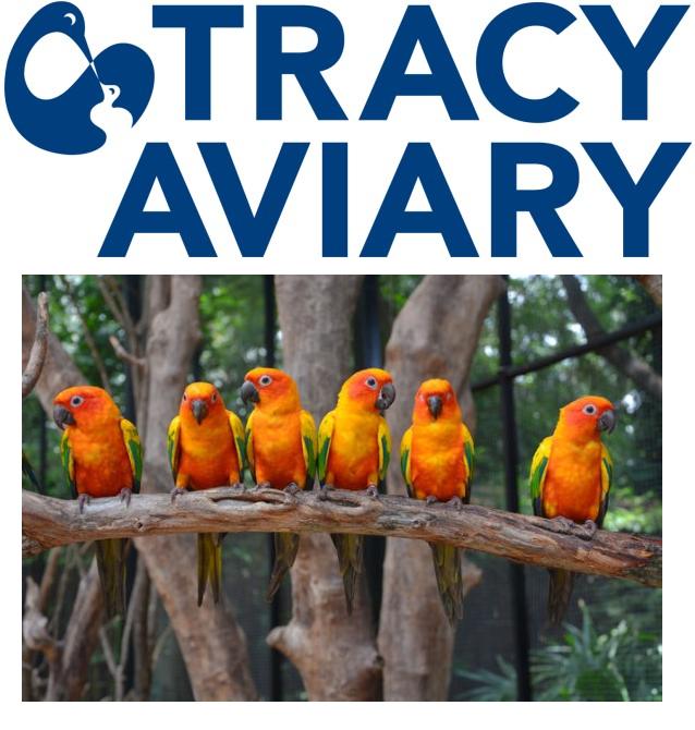 ksl tracy aviary membership or day pass deal