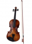 violin fiddle with case