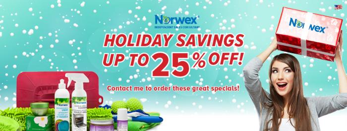 norwex-2