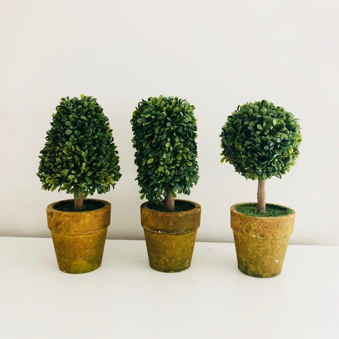 Mini Topiary Trees Set Of 3 For 18 47 Shipped Reg 39 99